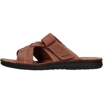Zapatos Hombre Zuecos (Mules) Grunland - Ciabatta  castagno CI2830 MARRONE