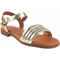 Zapatos Mujer Sandalias Eva Frutos Sandalia señora  r40 oro Plata