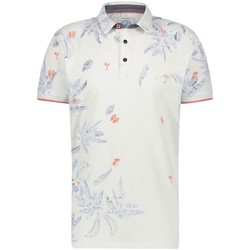 textil Hombre Polos manga corta A Fish Named Fred embroidery festival BLANCO