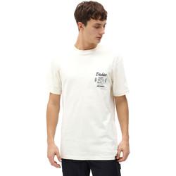 textil Hombre Camisetas manga corta Dickies DK0A4X9NECR1 Blanco