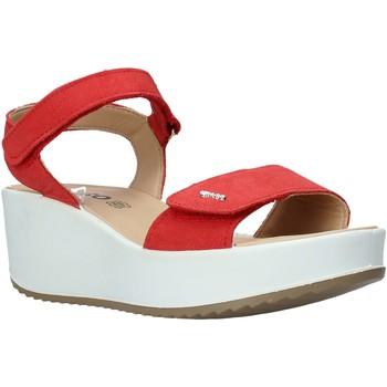Zapatos Mujer Sandalias IgI&CO 5178166 Rojo