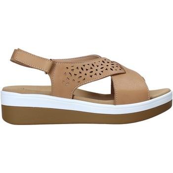Zapatos Mujer Sandalias Susimoda 2011 Marrón
