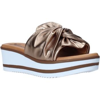 Zapatos Mujer Zuecos (Mules) Susimoda 1909 Marrón