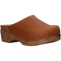 Zapatos Mujer Zuecos (Clogs) Bionatura 77C2072-T-GAUBRA Marrón