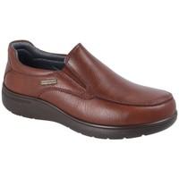 Zapatos Hombre Mocasín Luisetti MOCASÍN STREET 31001ST-W Marron Marrón