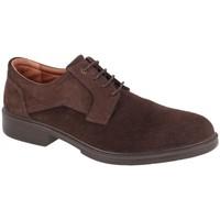 Zapatos Hombre Derbie Luisetti ZAPATO CONFORT CITY 28704ST Marrón