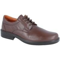 Zapatos Hombre Derbie Luisetti Zapato Confort Step 0101 Marrón