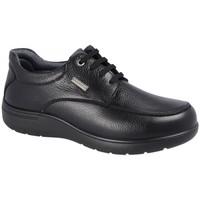 Zapatos Hombre Derbie Luisetti BLUCHER STREET 31002ST-W Negro Negro