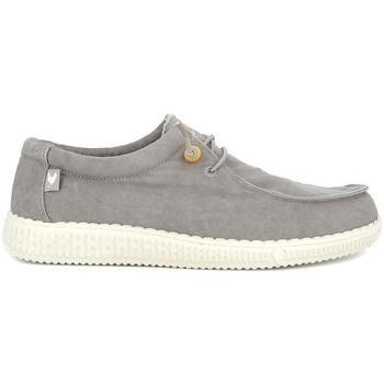 Zapatos Hombre Zapatillas bajas Walkinpitas WP150 WALLABI gris