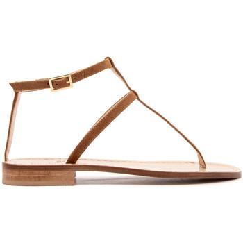 Zapatos Mujer Chanclas Paolo Ferrara 2901-BR-SELLA MARRONE