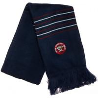 Accesorios textil Hombre Bufanda Canterbury  Azul