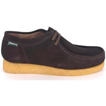 Zapatos Hombre Mocasín Sebago Zapatillas Koala Hombre - Marrón Marrón