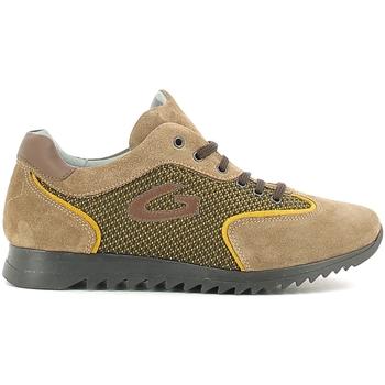 Zapatos Niños Zapatillas bajas Alberto Guardiani GK22343G Beige