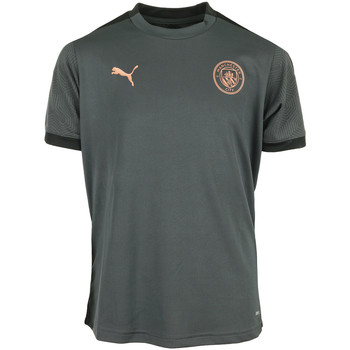 textil Niño Camisetas manga corta Puma MCFC Training Jersey Kids Gris