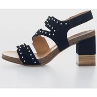 Zapatos Mujer Sandalias Penelope 5984 Noir