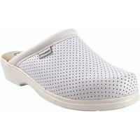 Zapatos Mujer Zuecos (Clogs) Bienve Zapato señora  22 zueco anatomico blanco Blanco