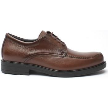 Zapatos Hombre Derbie & Richelieu Baerchi JARAMA1802 TABACO