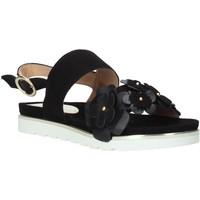 Zapatos Mujer Sandalias Docksteps DSE104965 Negro