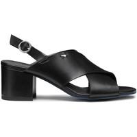 Zapatos Mujer Sandalias Alberto Guardiani AGW003405 Negro