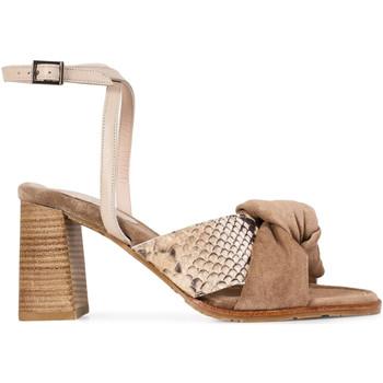 Zapatos Mujer Sandalias Paco Gil MARIANA Marrón