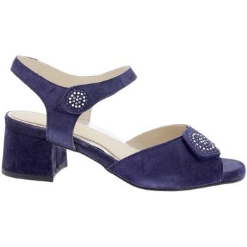 Zapatos Mujer Sandalias Piesanto 200288 Azul