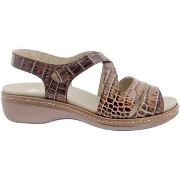 Zapatos Mujer Sandalias Piesanto 200812 Marrón