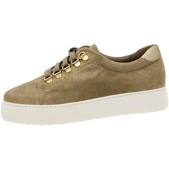 Zapatos Mujer Derbie Piesanto 180740 Beig
