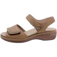 Zapatos Mujer Sandalias Piesanto 190802 Otros