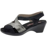 Zapatos Mujer Sandalias Piesanto 8861 Negro