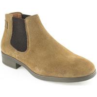 Zapatos Mujer Botas de caña baja Wilano L Boot Lady Otros