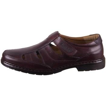Zapatos Hombre Derbie Josef Seibel Alastair 08 Marrón
