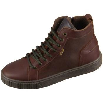 Zapatos Niños Zapatillas altas Bisgaard 618062201322 Marrón