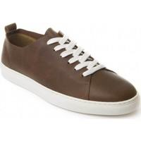 Zapatos Hombre Derbie Montevita 71857 BROWN