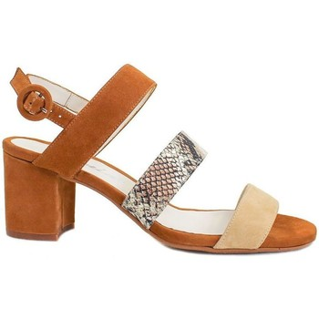 Zapatos Mujer Sandalias Gennia  Marrón