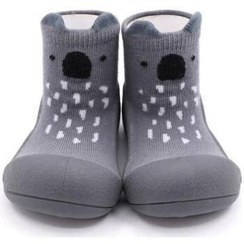 Zapatos Niños Pantuflas para bebé Attipas Endangered Animal Koala Gris