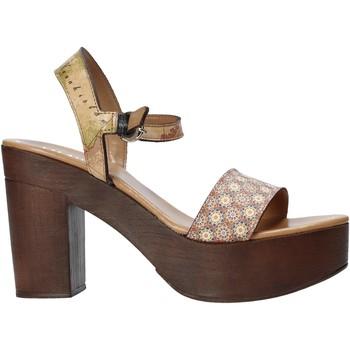 Zapatos Mujer Sandalias Alviero Martini E112 626A Marrón