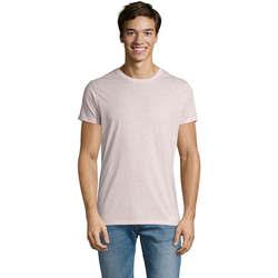textil Hombre Camisetas manga corta Sols REGENT FIT CAMISETA MANGA CORTA Rosa