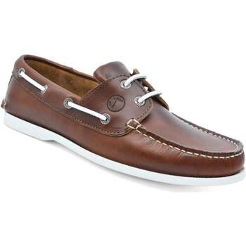 Zapatos Hombre Zapatos náuticos Seajure Náuticos Silistar Marrón