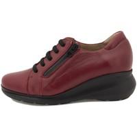 Zapatos Mujer Derbie Piesanto 215825 Burdeo