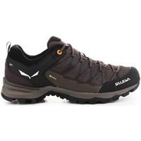 Zapatos Hombre Senderismo Salewa Mtn Trainer Lite Gtx Marrón