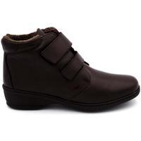 Zapatos Mujer Botines Notton 2322 Marrón