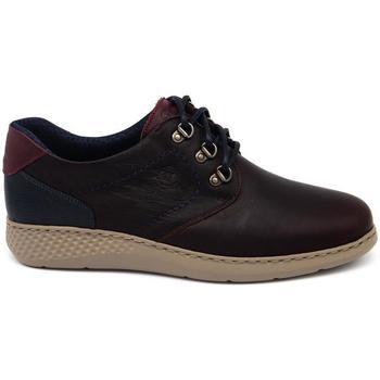 Zapatos Hombre Derbie Notton 81 Marrón