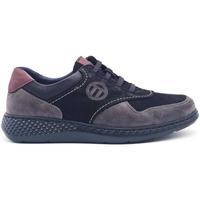 Zapatos Hombre Zapatillas bajas Notton 158 Negro