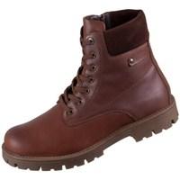 Zapatos Hombre Botas de caña baja Josef Seibel Cheston 01 Marrón