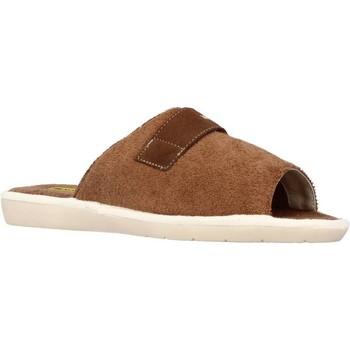 Zapatos Hombre Pantuflas Nordikas 7336B Marron