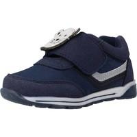 Zapatos Niño Botas Chicco GAMMA Azul