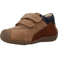 Zapatos Niño Botas Chicco GIONATAN Marron