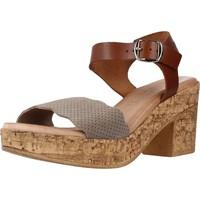 Zapatos Mujer Sandalias Chardi 4021CH Marron