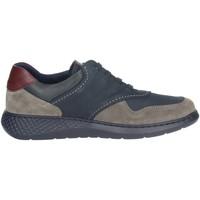Zapatos Hombre Zapatillas bajas Notton 158 Azul