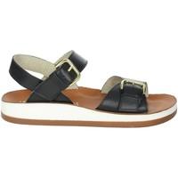 Zapatos Mujer Sandalias Novaflex FALMENTA Negro